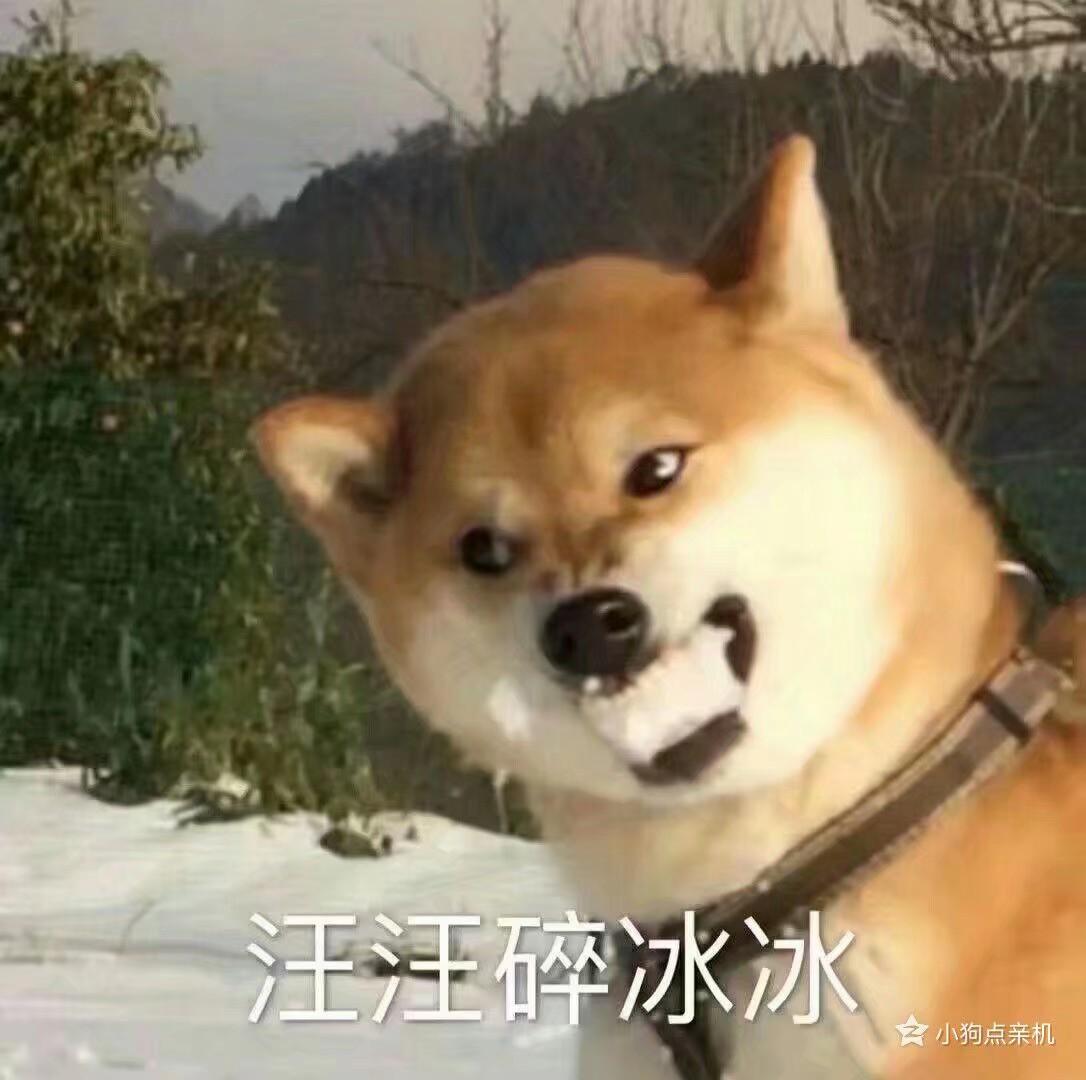 广州家教郭教员
