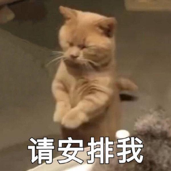 武汉家教李教员