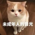 黄浦家教马老师